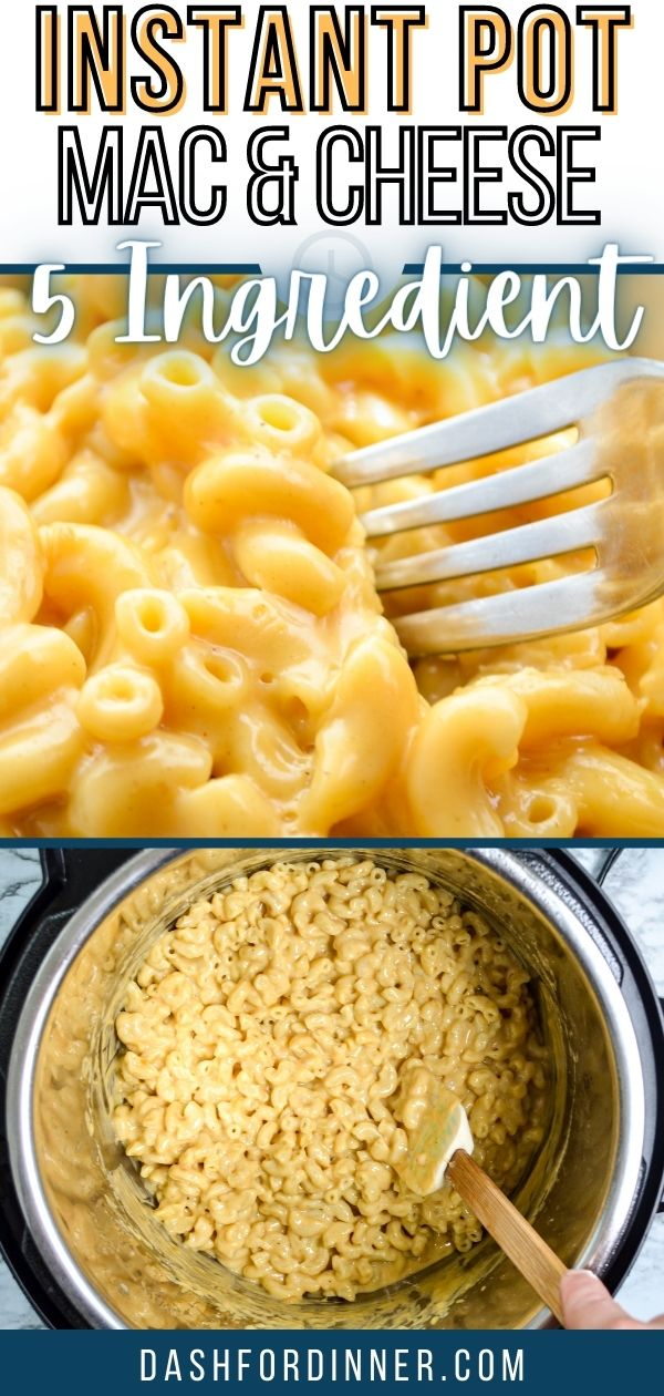 5 Ingredient Instant Pot Mac and Cheese