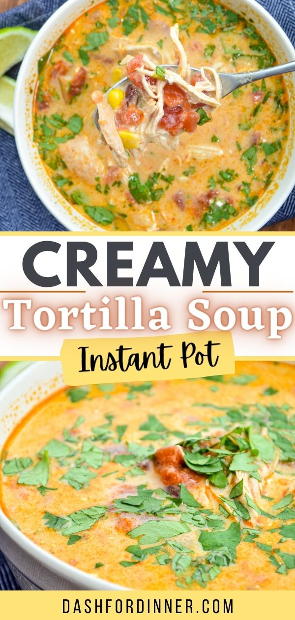 A bowl of tortilla soup, garnished with cilantro.